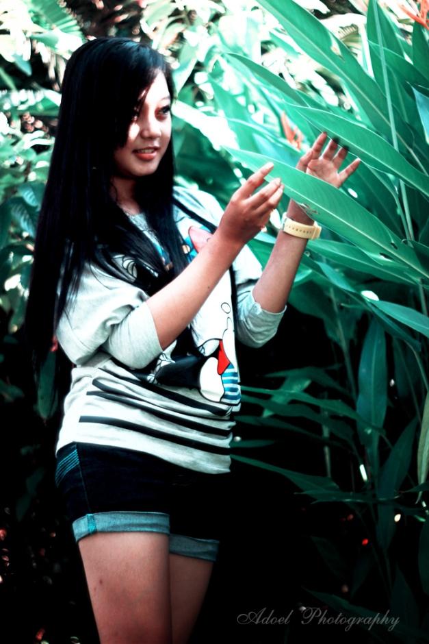 Borneo garden